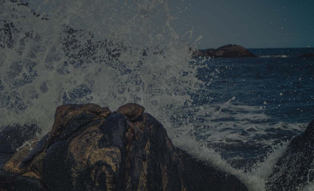 mar-de-galicia-mariscos