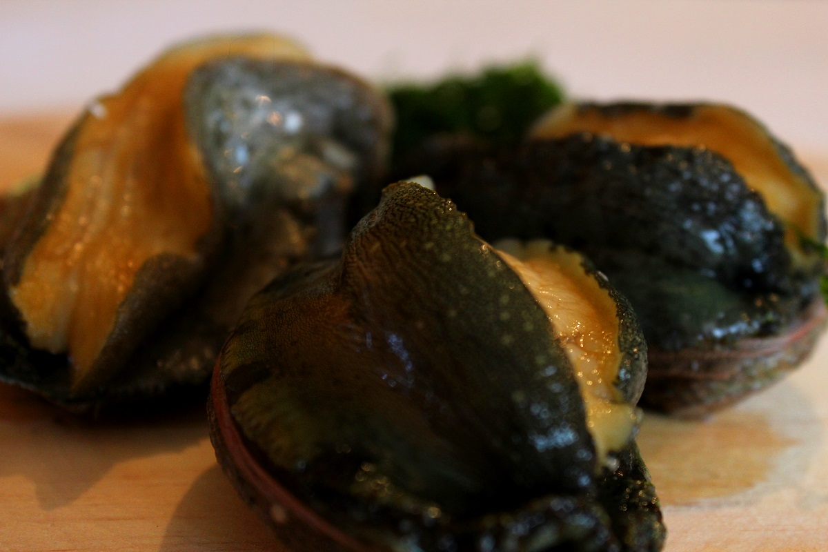 Abalone gallego