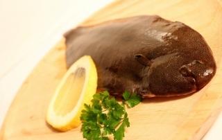 diferenciar el pescado fresco