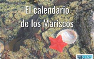 portada-calendario-mariscos