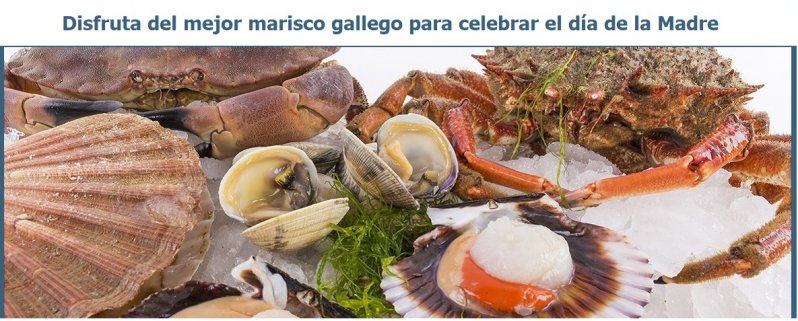 marisco gallego