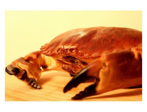 Platos veraniegos de marisco gallego: buey de mar relleno