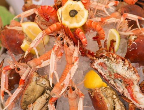 Compra marisco online y aprende a conservarlo: crustáceos y moluscos
