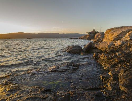 ¿Por qué el marisco de Galicia tiene mayor demanda frente al de otras latitudes?