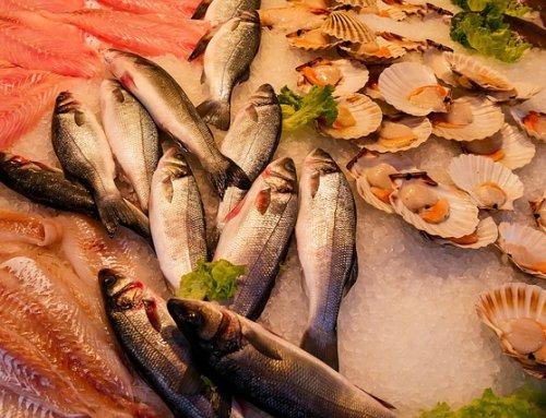 Guía para consumir pescado y marisco de temporada – Mariscos O Grove