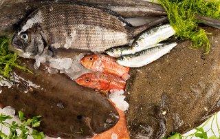 comprar pescados y marisco Galicia