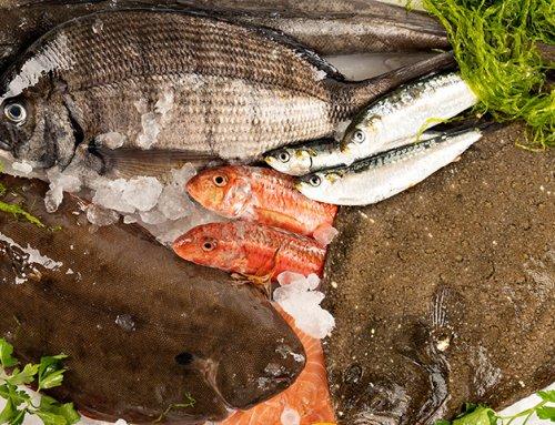 Comprar pescado gallego online, garantía de frescura en toda España.