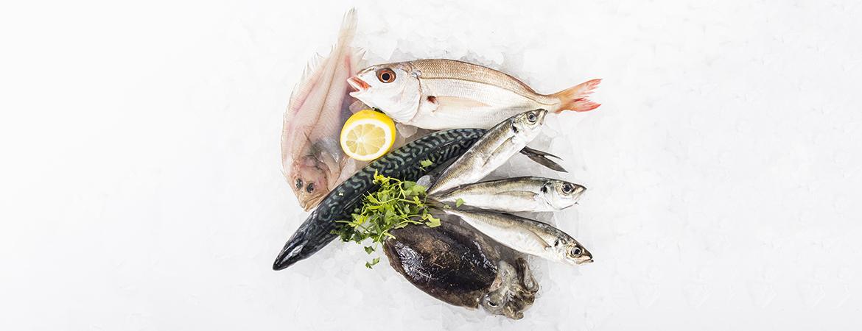 Bodegón pescado